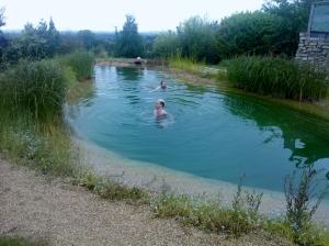 Bucks pool 1