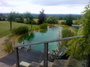 Bucks Pool 5